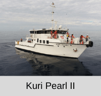 kuri pearl II photo